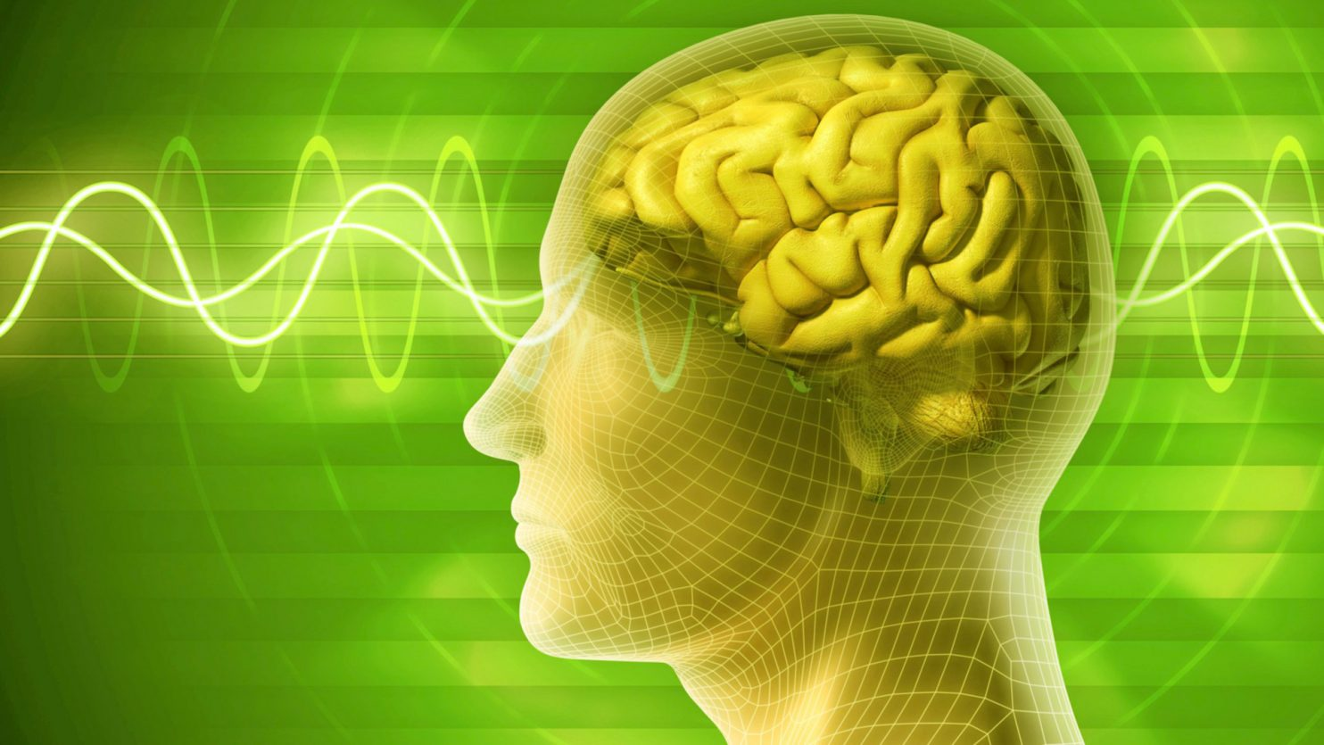 Brainwaves and qEEG Brain Mapping