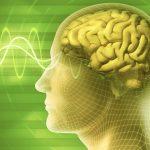 Brainwaves and qEEG Brain Mapping