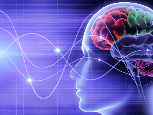 Understanding Your Brainwaves course image